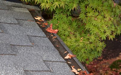 What Are Gutter Guards And How Do They Work?