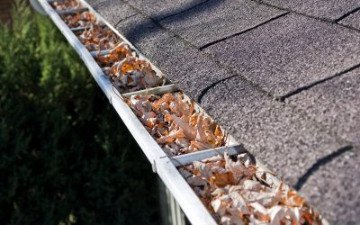 #1 Rated Gutter Cleaning Services In Pea Ridge, AR